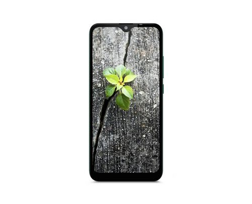 Gigaset GS110 - 15,5 cm (6.1 Zoll) - 1 GB - 16 GB - 8 MP - Android 9.0 - Grün